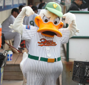 Quaker Jack Long Island Ducks baseball